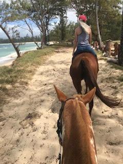 オアフ島 ノースショア ビーチ沿いで乗馬