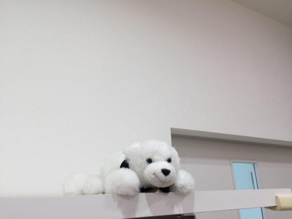 湘南台矯正歯科 院内